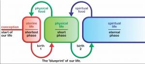 studio1world bahai inspired art - The Blueprint of Our Life. [ENGLISH]